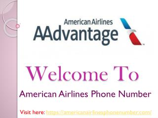 American Airlines Customer Services & Flight Booking