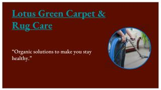 Carpet Cleaning DC | Lotus Green Carpet & Rug Care