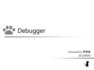 Why Debug a Program