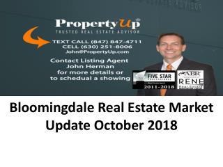 Bloomingdale Real Estate Market Update October 2018
