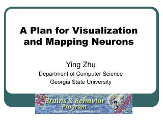A Plan for Visualization and Mapping Neurons