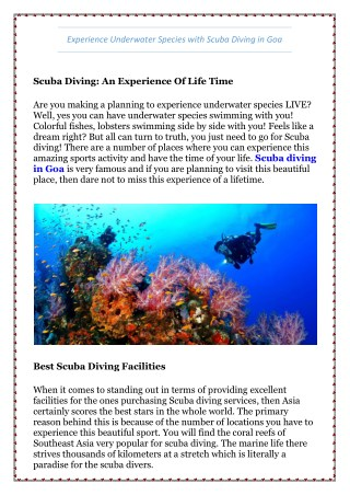 Experience Underwater Species with Scuba Diving in Goa