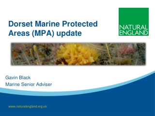 Marine Protected Areas    - -