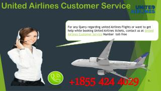 Contact the United Airlines Customer Service