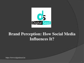 Digitalseed - Brand Perception: How Social Media Influences It?