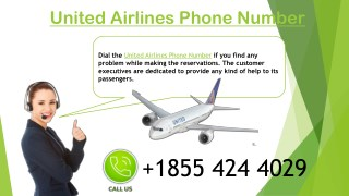 Connect United Airlines Phone Number for Instant Guidance