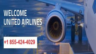 Contact the United Airlines Phone Number 1-855-424-4029