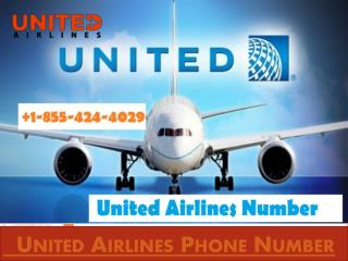 How to Contact United Airlines Phone Number