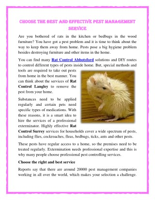 Choose the best and effective pest management service