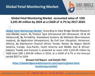 Global Fetal Monitoring Market is Growing at a Significant Rate in The Forecast Period 2017-2024