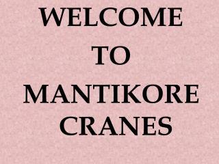 Camden Cranes