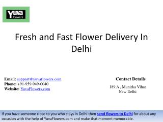 Fresh and Fast Flower Delivery In Delhi