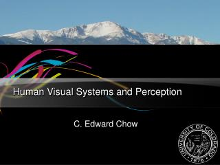 Human Visual Systems and Perception