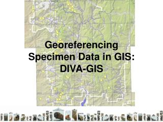 Georeferencing  Specimen Data in GIS:  DIVA-GIS
