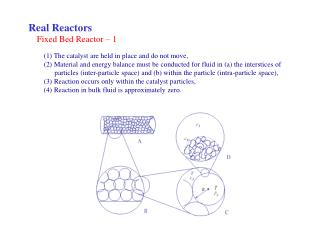 Fixed Bed Reactor – 1