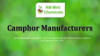 Camphor Manufacturers