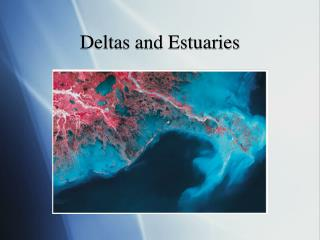 Deltas and Estuaries