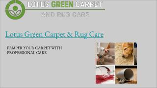Rug Cleaning Washington DC | Lotus Green Carpet & Rug Care