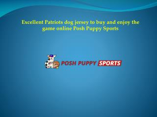 Excellent Patriots dog jersey to buy and enjoy the game online Posh Puppy Sports