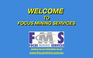 Products and Services Provided by Focus Mining