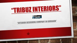 Interior Designing Services by Tribuz Interiors