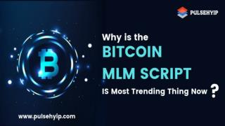 Bitcoin MLM Script - Why it is so trendy Thing Now?
