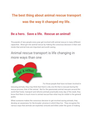 The best thing about animal rescue transport was the way it changed my life