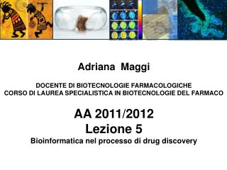 Bioinformatics in the  drug discovery process