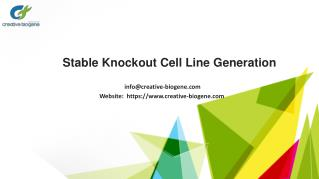 Cas9 Stable Cell Lines