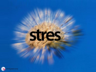 stres yonetimi