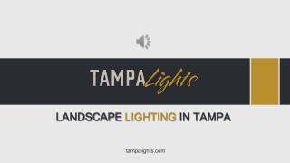 Best Landscape Lighting Installation - Tampa Lights