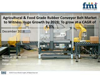 Agricultural & Food Grade Rubber Conveyor Belt Market – Competitive Landscape
