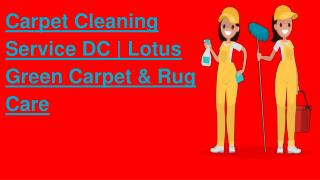 Carpet Cleaning Service DC | Lotus Green Carpet & Rug Care