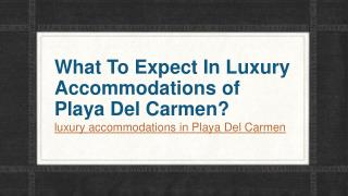 What To Expect In Luxury Accommodations of Playa Del Carmen?