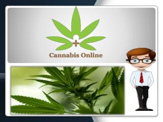 Cannabis Listings - Complete Free Events Directories