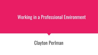 Clayton Perlman: Working in a Professional Environment