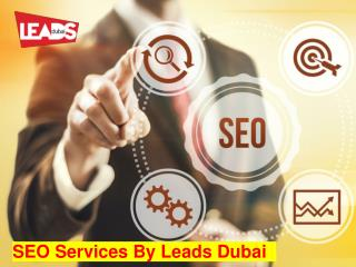 SEO Services in Dubai   SEO Case Studies