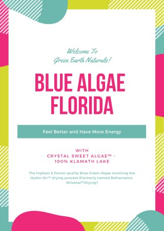 Blue Algae Florida