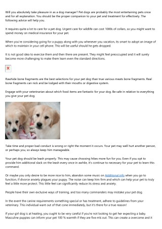 When You Want Puppy Advice, Check This Out Write-up