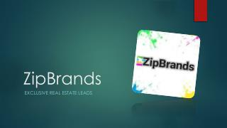 Exclusive Real Estate Leads - ZipBrands