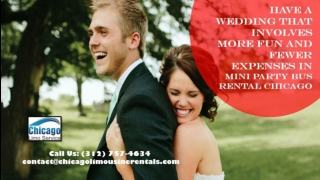 Have A Wedding That Involves More Fun and Fewer Expenses in Mini Party Bus Rental Chicago