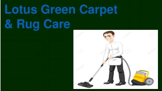 Lotus Green Carpet & Rug Care