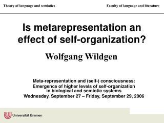 Is metarepresentation an effect of self-organization?