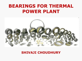 BEARINGS FOR THERMAL POWER PLANTS