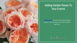 Add Classy Garden Roses in Your Wedding Theme