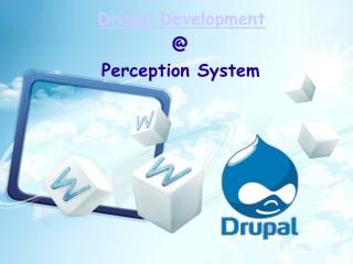 Drupal Development Company India