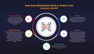 Leverage Crypto Phenomenon with Blockchain Development Company
