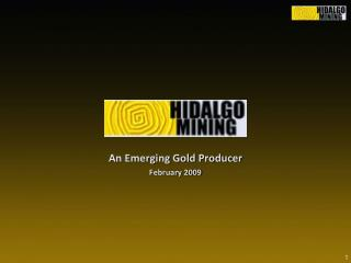 An Emerging Gold Producer February 2009