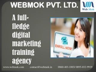 website design Institute in Janakpuri