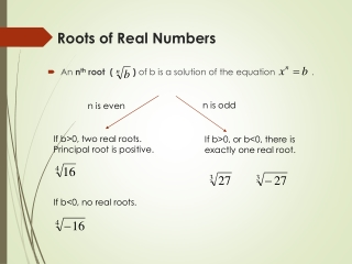Roots of Real Numbers